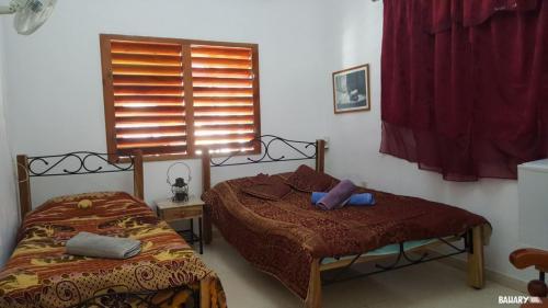 Casas Houses La Habana 1