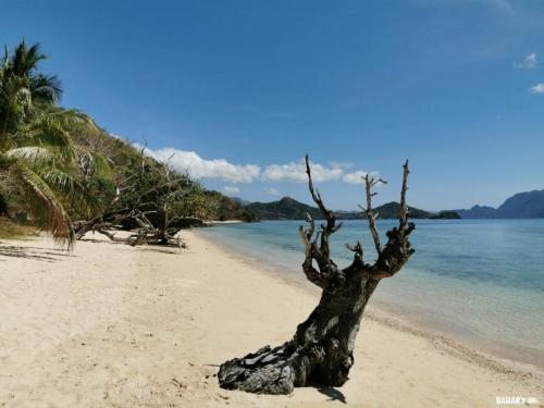Dimanglet-beach-filipinas-6-coron