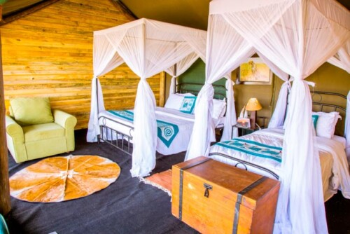 Heritage National Park Accommodation Tented Camp (17)