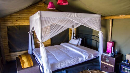 Heritage National Park Accommodation Tented Camp