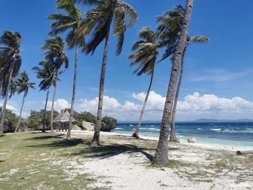 Island-hopping-bohol-filipinas-3