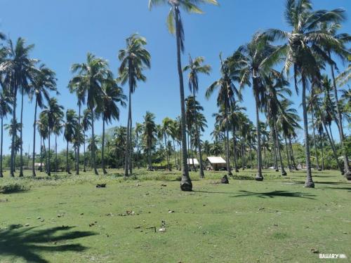 Island-hopping-bohol-filipinas-7