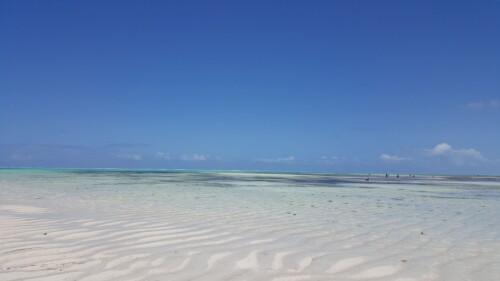 Mejores playas Zanzibar Jambiani 2