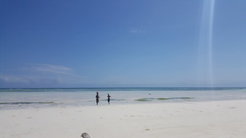 Mejores playas Zanzibar Jambiani
