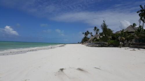Mejores playas Zanzibar Kizimkazi