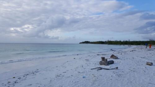 Mejores playas Zanzibar Pingwe