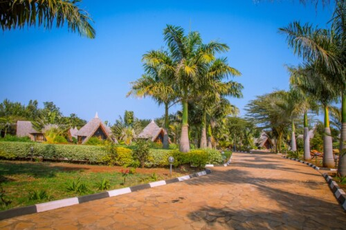 Tarangire Lodge Accommodation (21)
