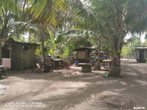 balidbid-beach-bantayan-6