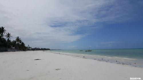 jambiani-beach-zanzibar-4