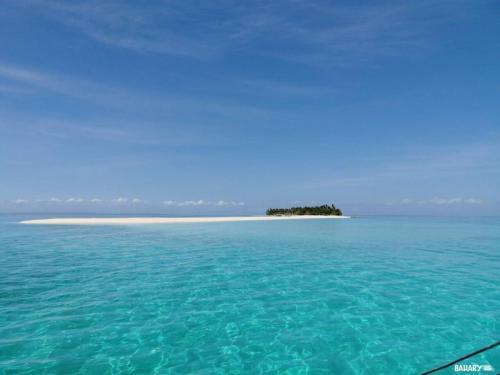 kalanggaman-beach-malapascua-1
