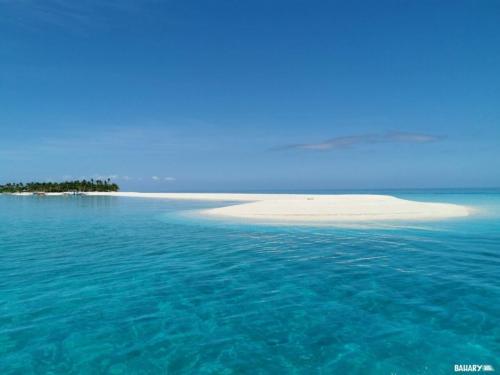 kalanggaman-beach-malapascua-2