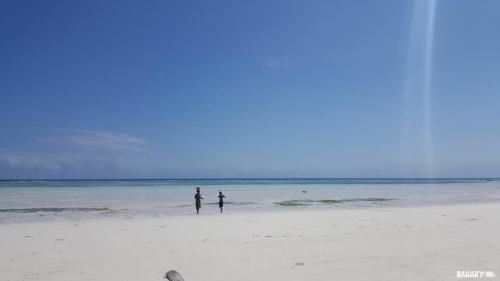 kizimkazi-beach-zanzibar-1