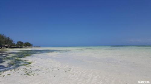 kizimkazi-beach-zanzibar-2