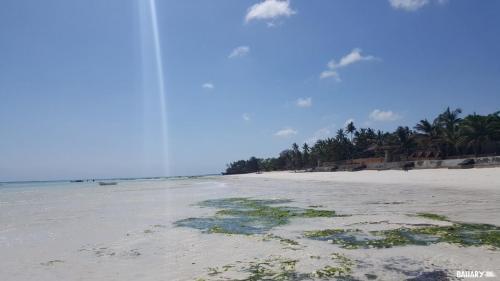 kizimkazi-beach-zanzibar-3