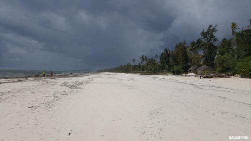 matemwe-beach-zanzibar-2