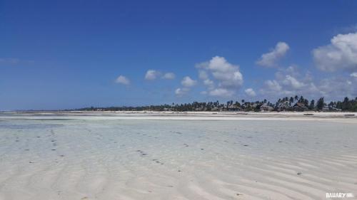 matemwe-beach-zanzibar-6