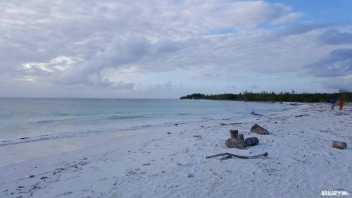 pingwe-beach-zanzibar-1