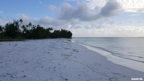 pingwe-beach-zanzibar-2