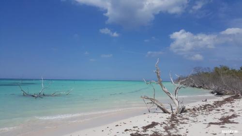 playa cayo jutias 3