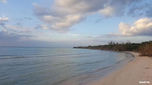 playa cayo levisa 5