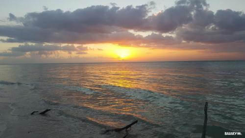 playa cayo jutias 6