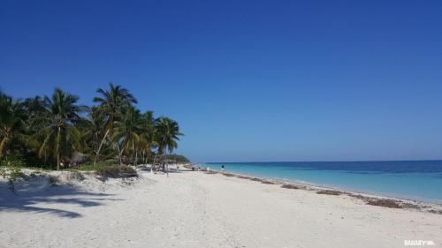 playa cayo levisa 10