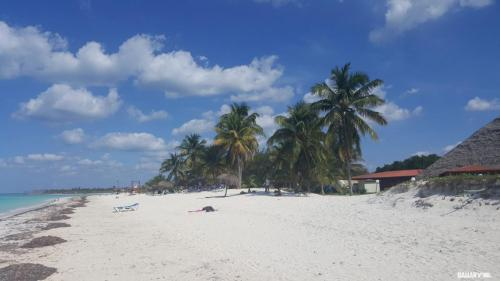 playa cayo levisa 12