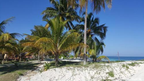 playa cayo levisa 9