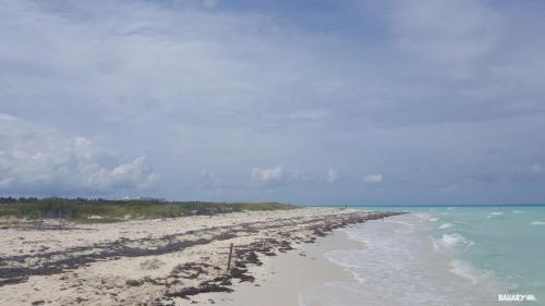 playa cayo santa maria 3
