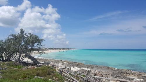 playa cayo santa maria 6