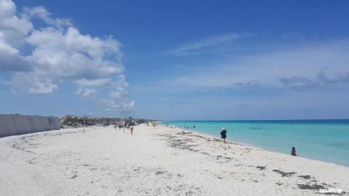 playa cayo santa maria 8