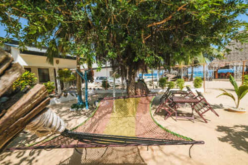 Hotel Zaza Nungwi Beach Zanzibar